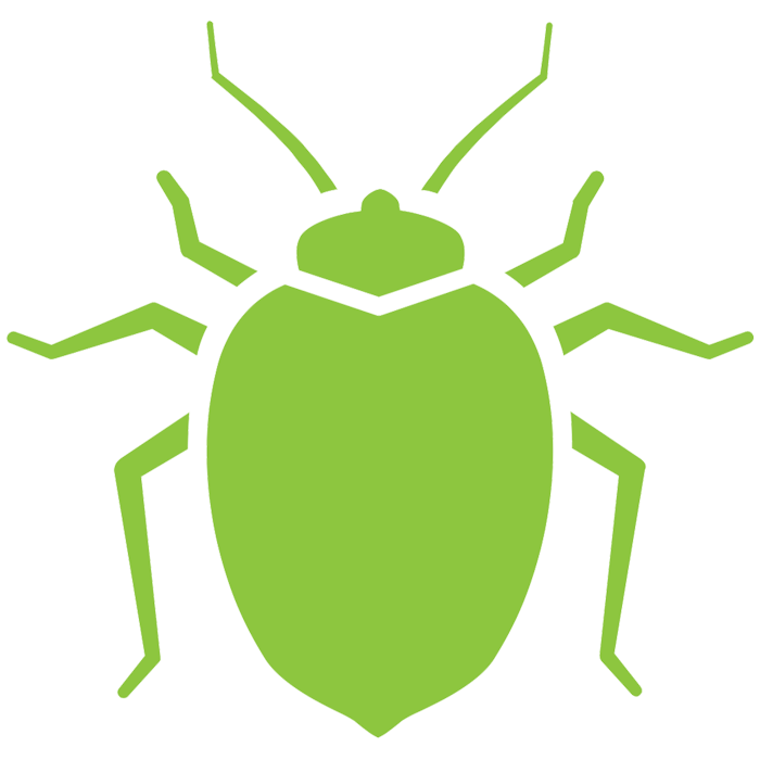 bed bug kansas city
