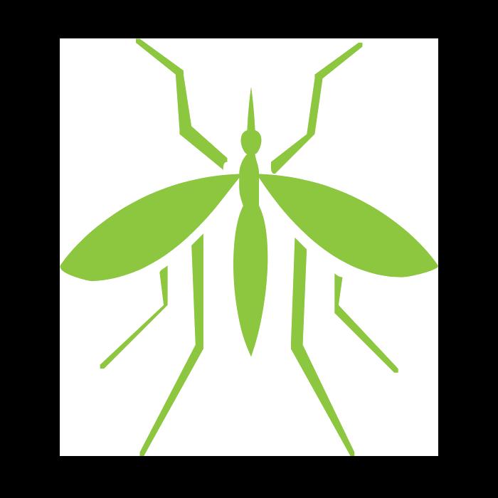 mosquitos flies kansas city