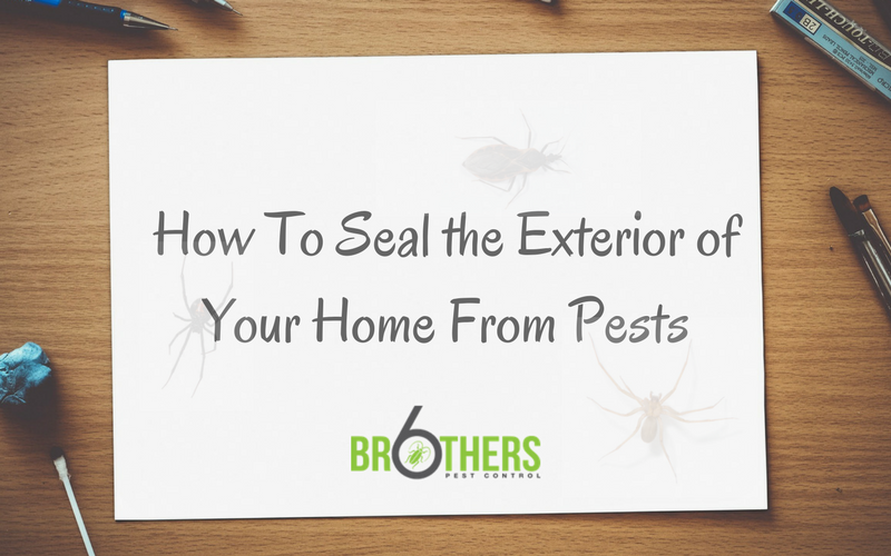 How to Seal the Exterior of your home from pests