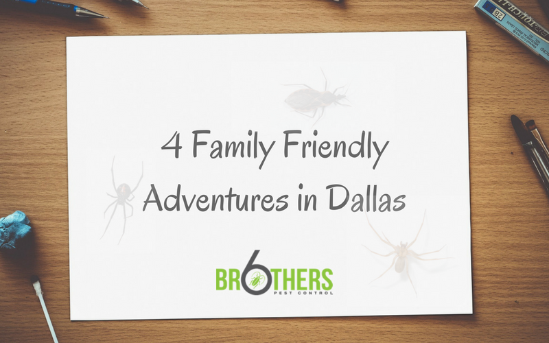 4 Family Friendly Adventures in Dallas