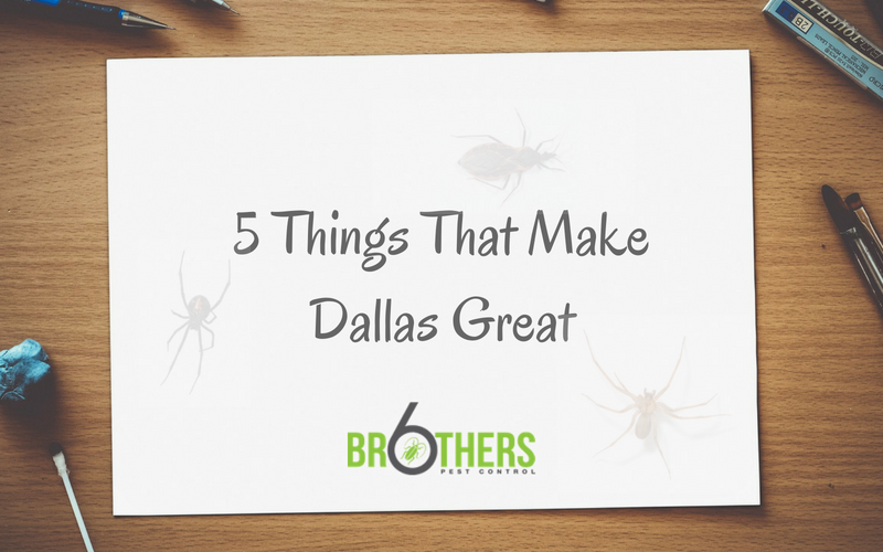 5 Things That Make Dallas Great