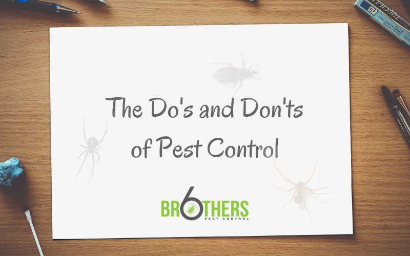 do's and don'ts of pest control