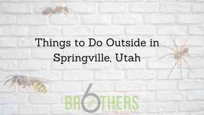 Things to Do Outside in Springville, Utah